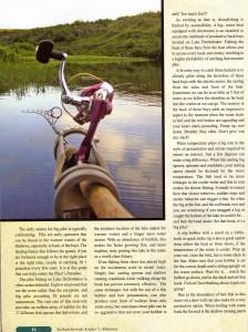 ldfc_magazine_pic_article_1
